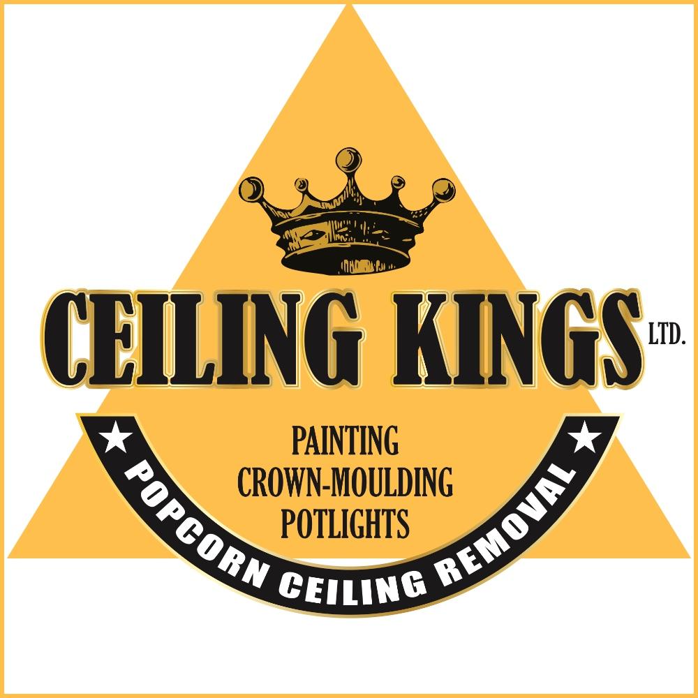 Ceiling Kings Halton Mississauga.jpg