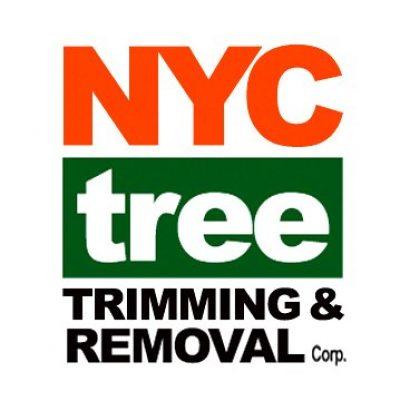 NYC tree cutting.jpg