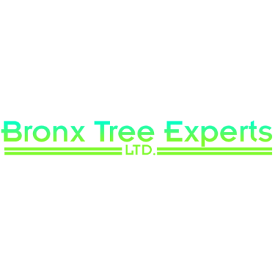 Bronx Tree Pro - Tree Removal, Cutting & Trimming Service Logo-1.png