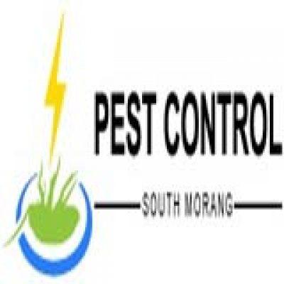 Pest Control South Morang
