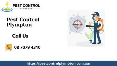 Plympton Pest Control.jpg