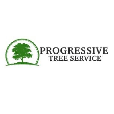 progressiv-tree-logo-transparent.jpg