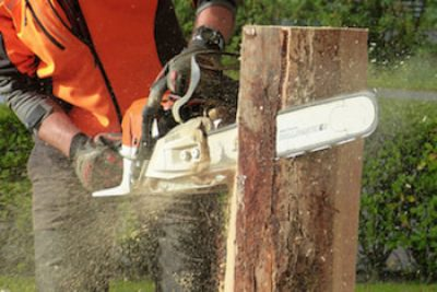 chainsaw-cutting-tree_orig.jpg