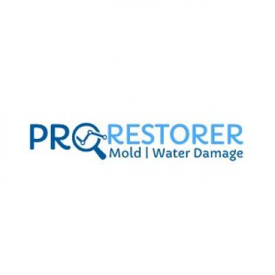 DC-Pro-Restorer-Logo-1.jpg