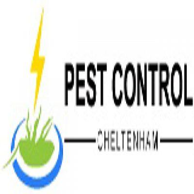 Pest Control Cheltenham
