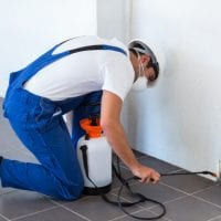 manual-worker-spraying-insecticide-pipe_107420-27277.jpg