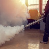 man-work-fogging-eliminate-mosquito-preventing-spread-dengue-fever-zika-virus_35018-325.jpg