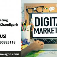Digital Marketing Company in Chandigarh - Solution Wagon.png