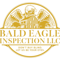 bald eagle inspection logo.png
