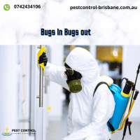 https___pestcontrol-brisbane.com.au_ (1).png