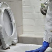 Toilet Bowl.jpg