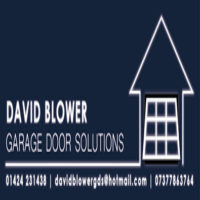 David-Blower-new-logo-300x107.jpg