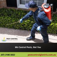pestcontrolgleniris.com.au (1).png