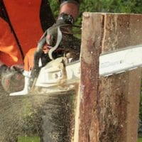 chainsaw-cutting-tree_orig.jpg