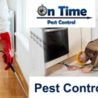 Pest Control Point Cook